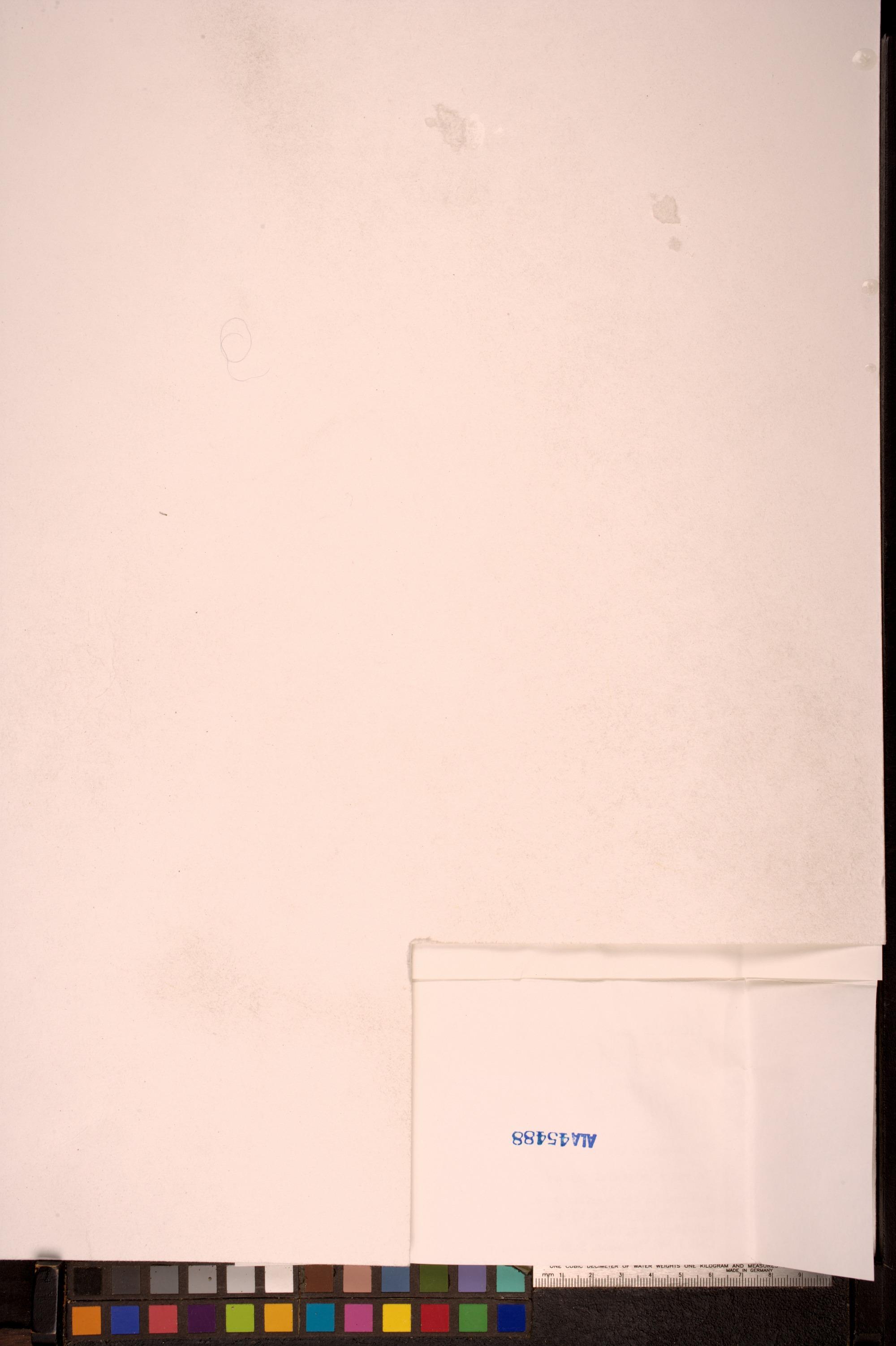 Aspicilia fimbriata image